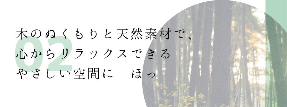 wp-image-6738
